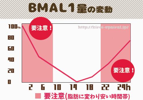 ビーマルワン(BMAL1)とは?図表